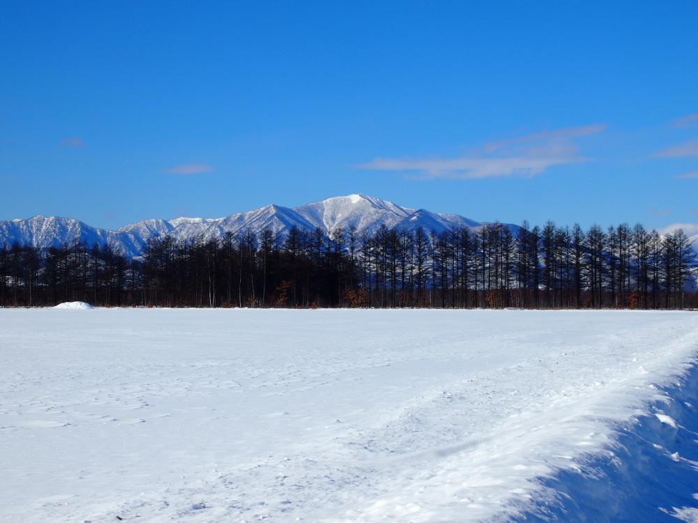 冬は快晴の日が多い十勝・・中札内村・村道47号線をゆく。_f0276498_13463055.jpg