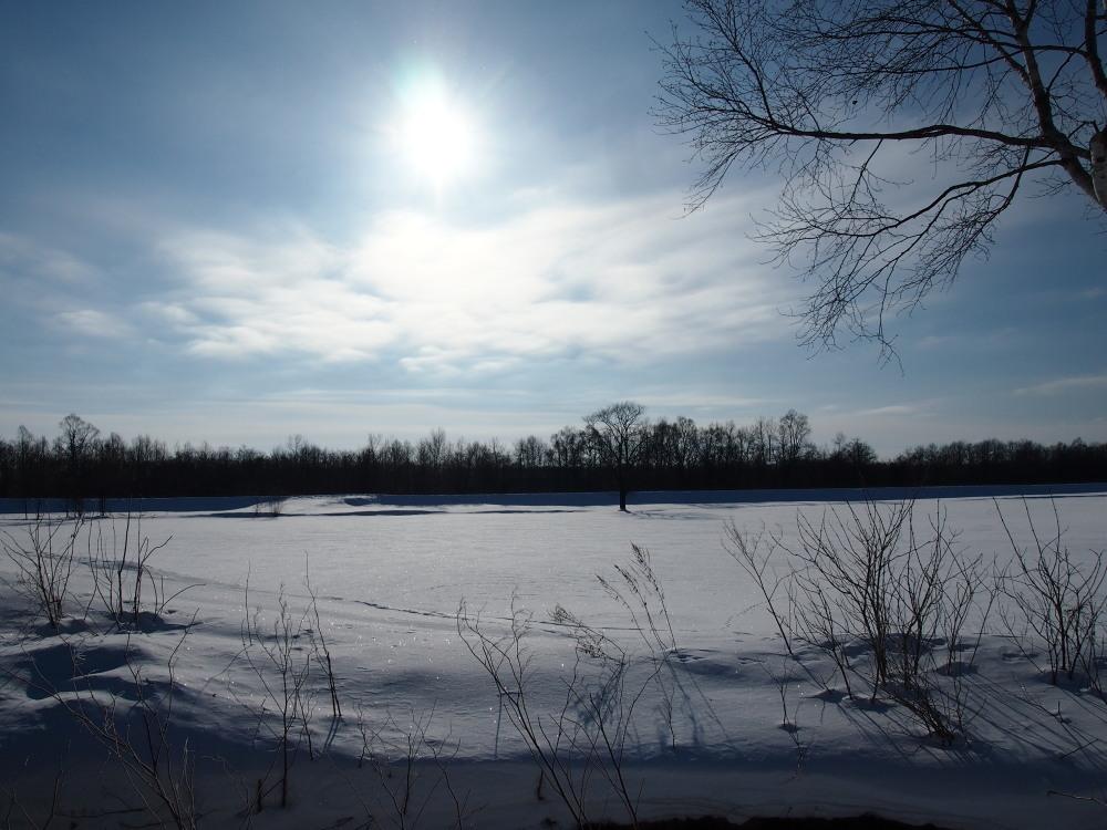 """マイナス23℃の朝、札内川周辺で見かけた""""ダイヤモンドダスト""""_f0276498_14232767.jpg"""