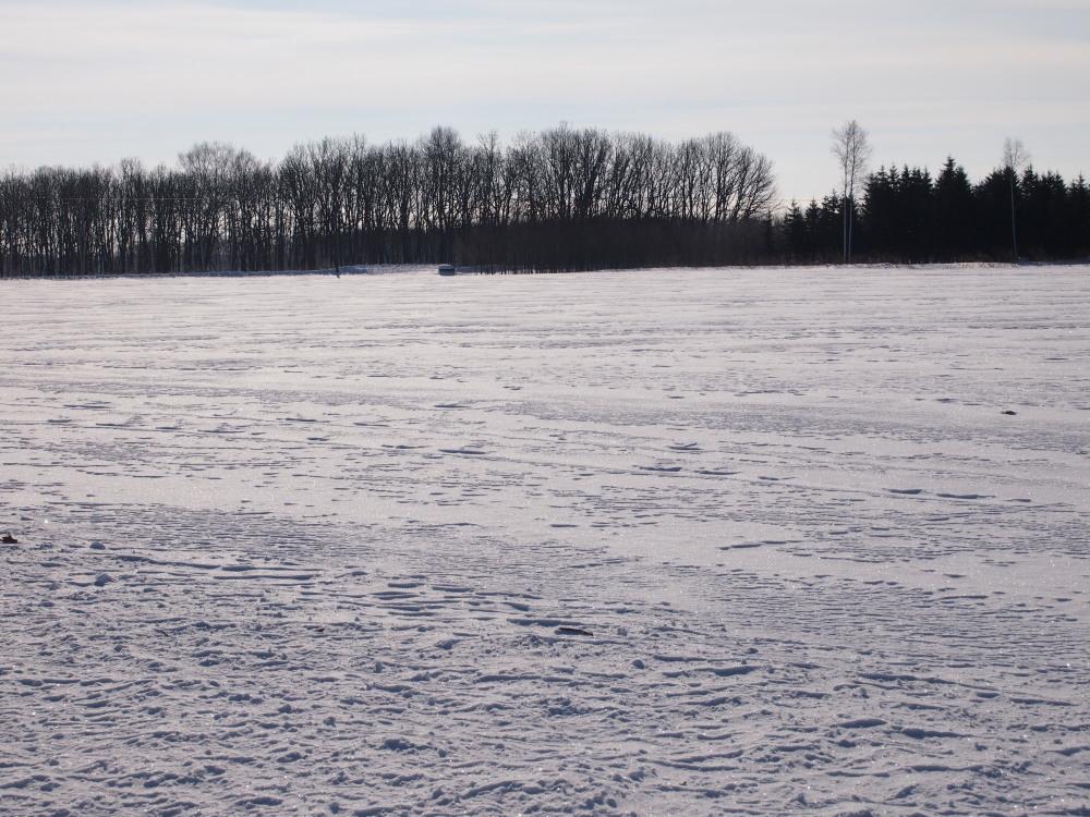 """マイナス23℃の朝、札内川周辺で見かけた""""ダイヤモンドダスト""""_f0276498_14243399.jpg"""