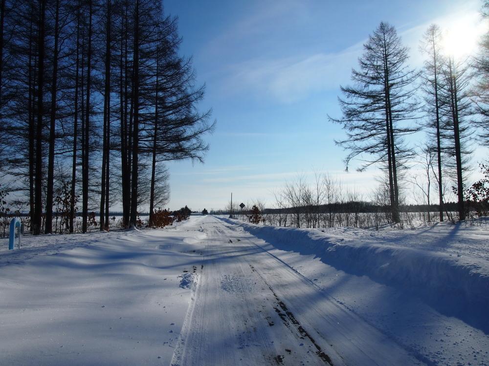 """マイナス23℃の朝、札内川周辺で見かけた""""ダイヤモンドダスト""""_f0276498_14251915.jpg"""