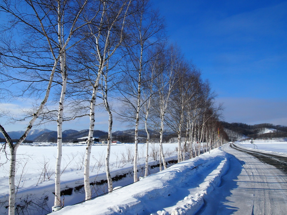 """マイナス23℃の朝、札内川周辺で見かけた""""ダイヤモンドダスト""""_f0276498_14261809.jpg"""