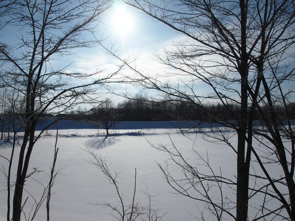 """マイナス23℃の朝、札内川周辺で見かけた""""ダイヤモンドダスト""""_f0276498_14264982.jpg"""