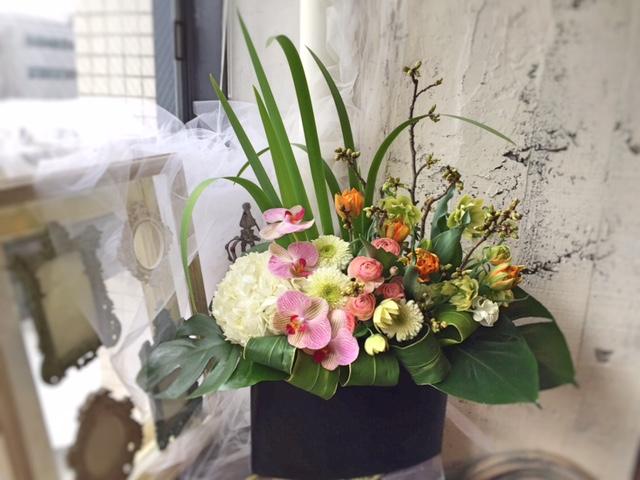 開店お祝いの贈り花_e0128024_5523029.jpg