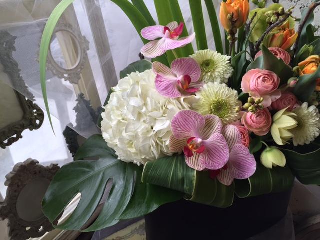 開店お祝いの贈り花_e0128024_5523032.jpg