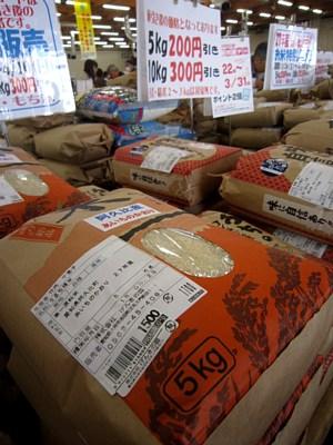 春のお米特別販売はじまる_c0141652_10451353.jpg