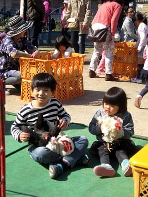 今週末も、いちご動物園開園!_c0141652_14441487.jpg