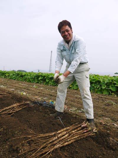 有機栽培の水田ごぼう 元気に成長しています!収穫は4月下旬より!!_a0254656_1892045.jpg