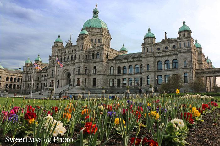 カナダ・ビクトリア〜Spring is here in Victoria_e0046675_08462745.jpg