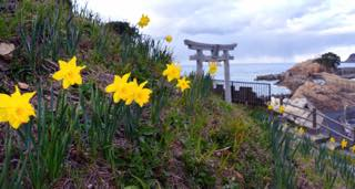昨日の午後はロケハンをかねて岩美町へ.....撮影で..._b0194185_22244879.jpg