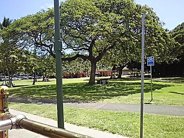 ハワイの「アサイボール」は外せないでしょ??_f0316507_10444327.jpg
