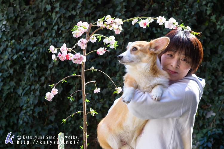 モモちゃんの花桃と_d0102523_22533078.jpg
