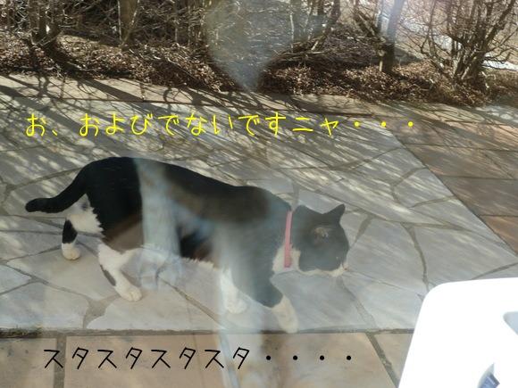 c0259945_11303651.jpg