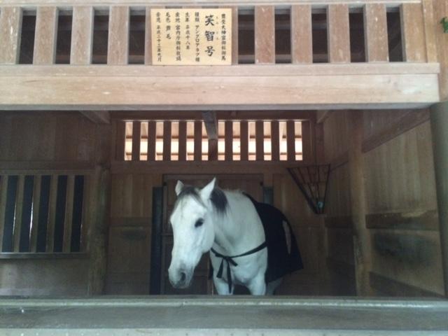 伊勢神宮へ行って詣りました。_a0050302_13153178.jpg