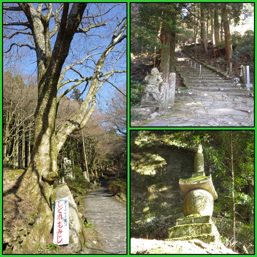 両子山へ_e0164643_22582243.jpg