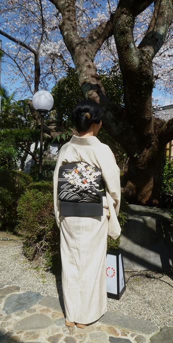 上七軒北野をどり・素敵な桜の帯のお客様。_f0181251_17454083.jpg