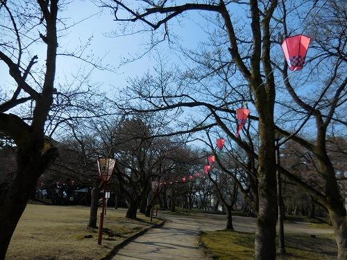 桜 ちらほら_c0327752_10030389.jpg