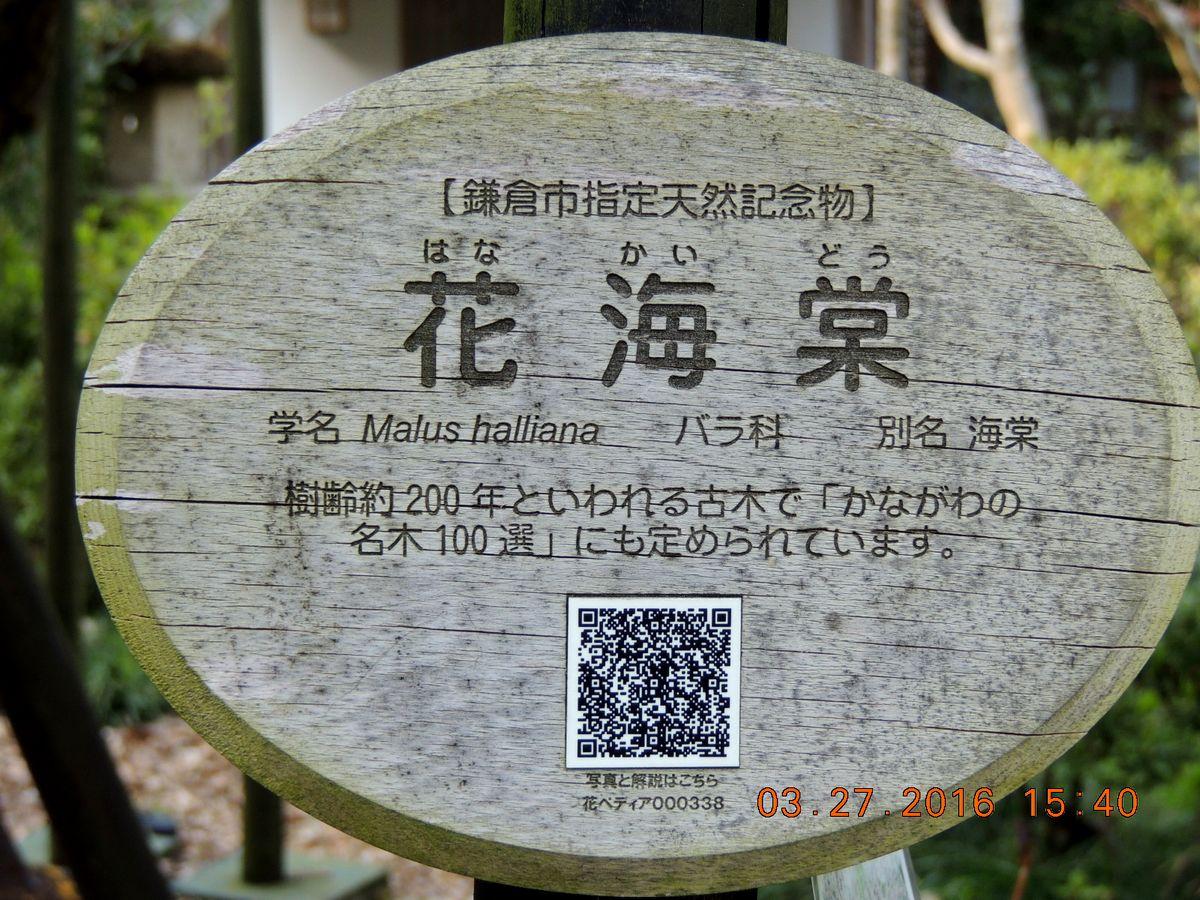 f0104277_8213231.jpg