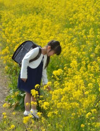 お姉ちゃんの時は満開の桜のしたで撮影でしたが....._b0194185_22594298.jpg