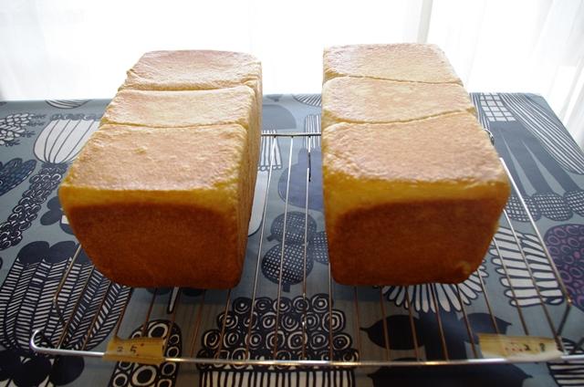 食パン試作たち_e0167593_0255431.jpg