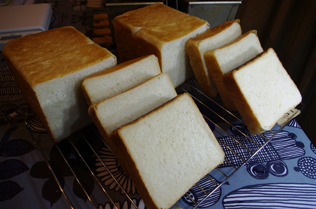 食パン試作たち_e0167593_0283723.jpg