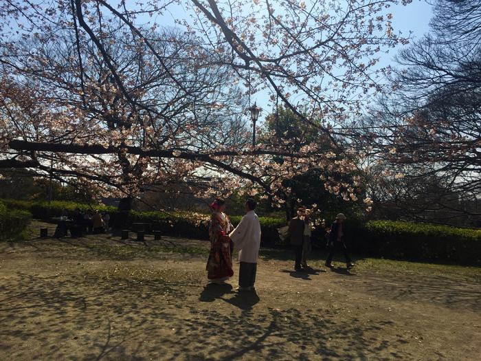 春期休業のお知らせ_d0116009_10395914.jpg