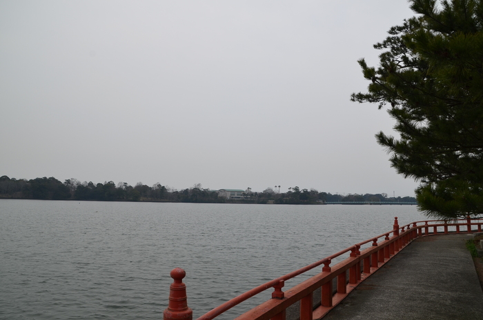 """Tokiwa ParkからUBE Airport・・・そして旅立ち\""_d0153941_2242396.jpg"