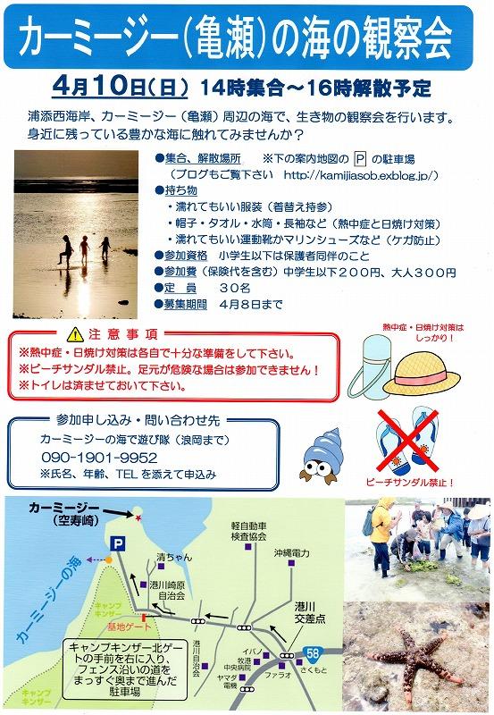 観察会の中止と磯散歩_c0180460_10472686.jpg