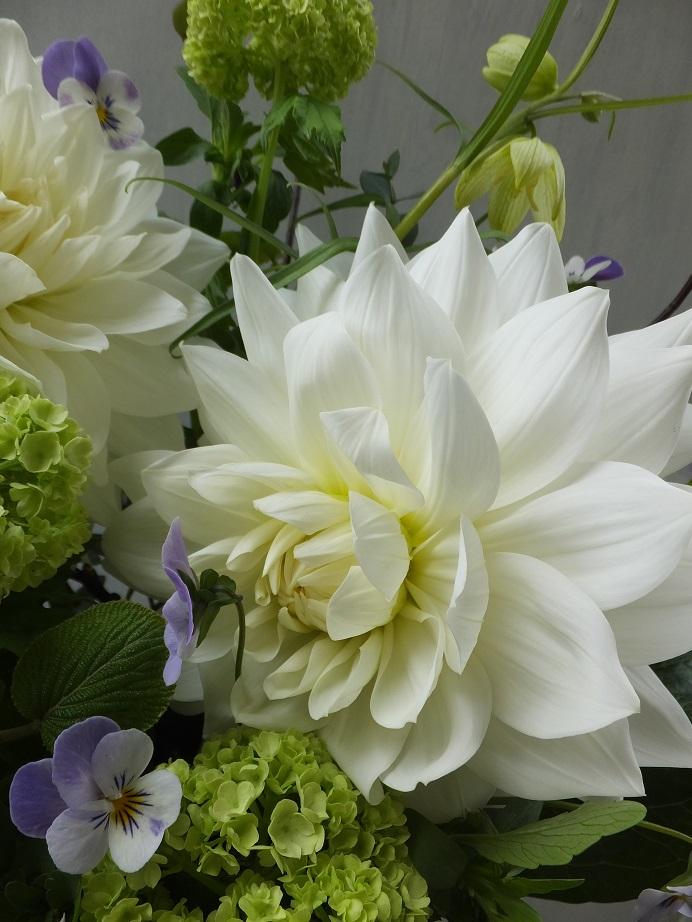 オークリーフ(お悔やみ花 white&green)_f0049672_13535656.jpg