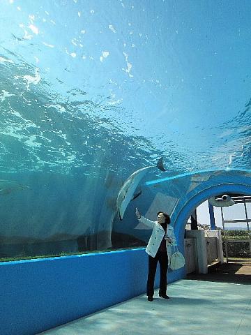 水族館はお好きですか。_b0141773_2354116.jpg