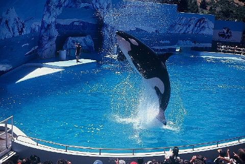 水族館はお好きですか。_b0141773_23583318.jpg