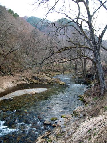 川の水の春の色_f0236291_13112354.jpg