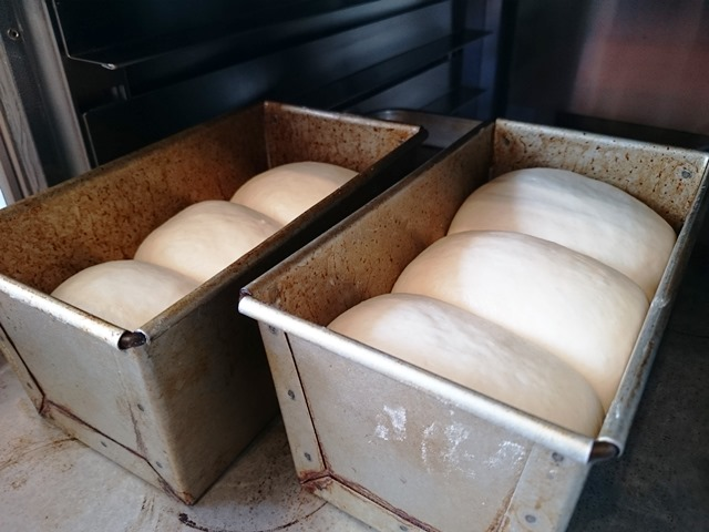 型比容積が違うと発酵も違う_e0167593_0121556.jpg