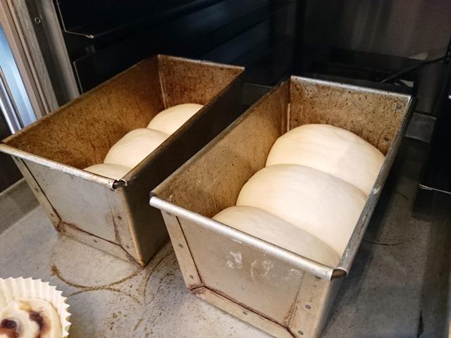 型比容積が違うと発酵も違う_e0167593_012536.jpg
