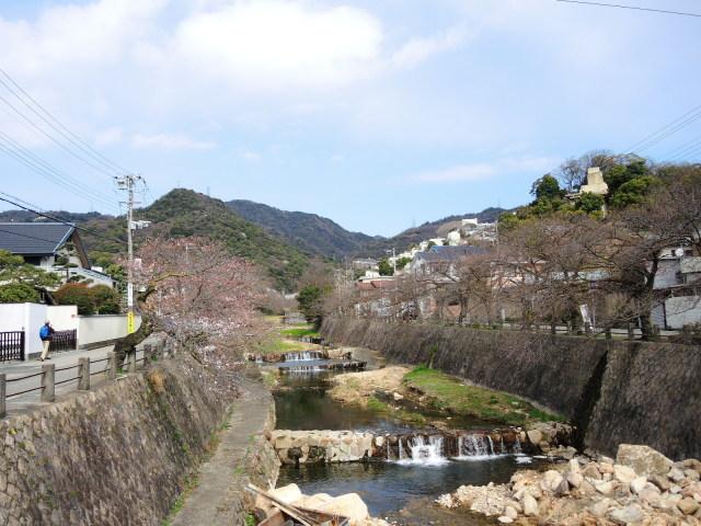 夙川と芦屋川をのんびり散歩_f0100593_13212566.jpg