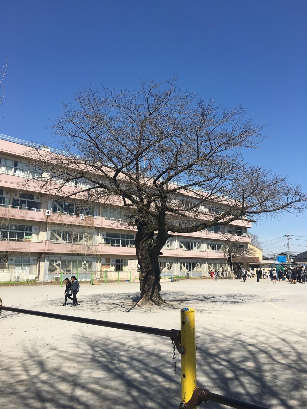 小学校卒業式_c0004024_11444640.jpg