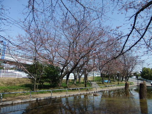 朝の富士...夕暮れのダイヤモンド富士_b0137932_19191562.jpg