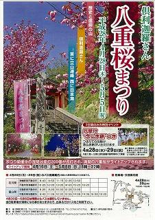 2016年 倶利迦羅さん八重桜まつり_c0208355_943656.jpg