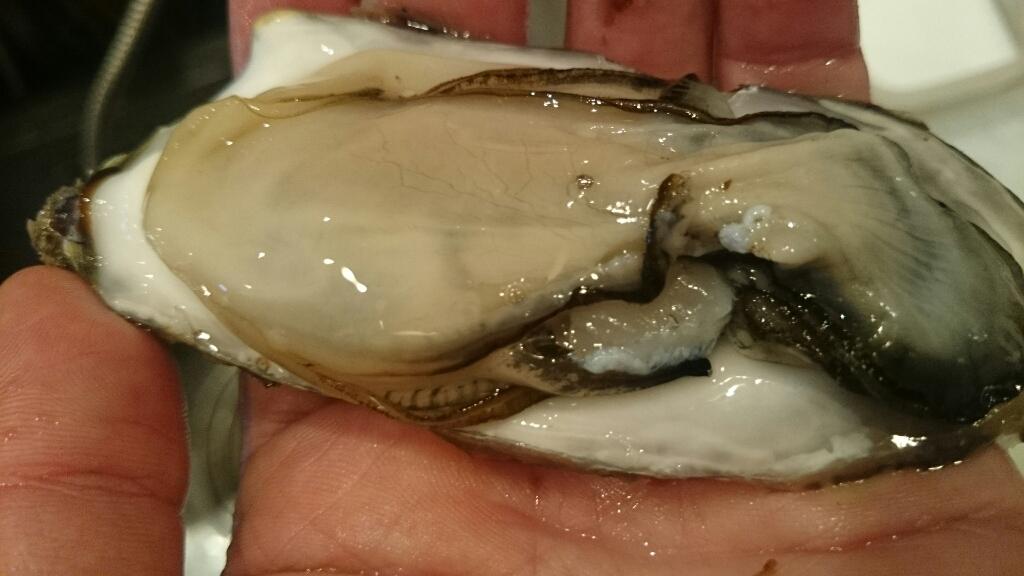 ロックな牡蠣、本日到着!_f0187266_17235751.jpg