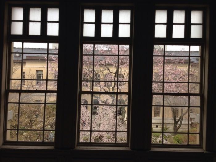 府庁の春の展覧会_c0100195_20142968.jpg