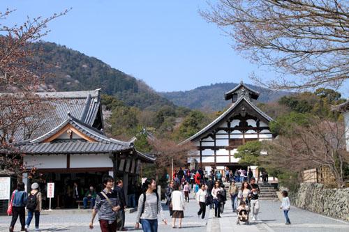 16 桜だより16 嵐山1天龍寺_e0048413_21104820.jpg