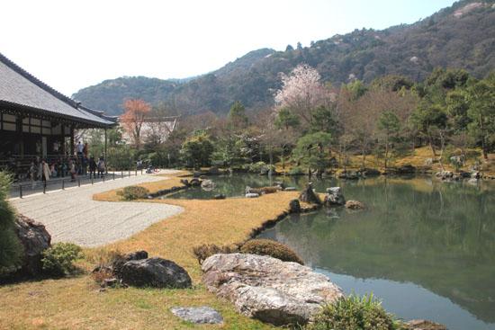 16 桜だより16 嵐山1天龍寺_e0048413_2111296.jpg