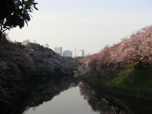 靖国神社~千鳥ヶ淵_e0253932_841772.jpg