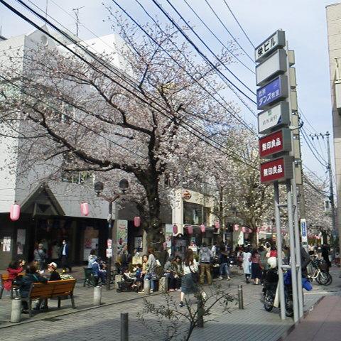 緑道_d0014133_14112298.jpg