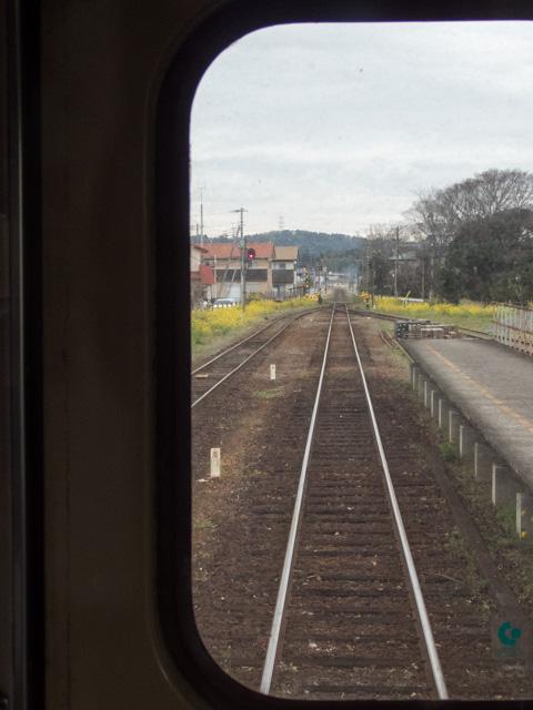 小湊鉄道に乗車_a0257652_1664152.jpg