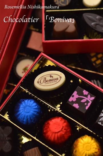 海外のチョコレート_d0078355_014214.jpg