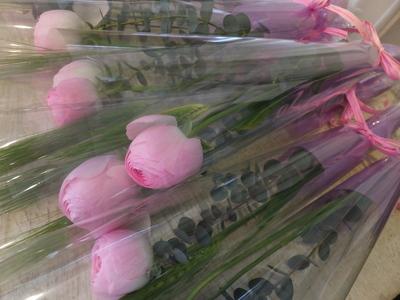 オークリーフ(卒業式の花束)_f0049672_13471254.jpg