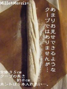 予告していた黒い棒…@ホシノF_a0348473_13015852.jpg