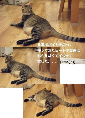 【アレンジ】ハロウィンは南瓜と猫だね♪_a0348473_13041243.jpg