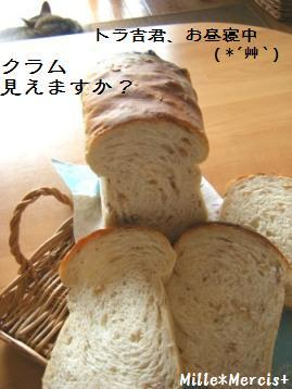 【Coupe Junkies】Tin Bread レッスン2_a0348473_13094410.jpg