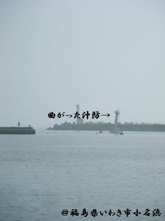 【レポ】小名浜の様子と復興フェア_a0348473_13165668.jpg